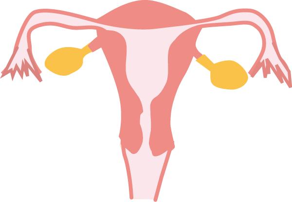 妊娠超初期か気になる方はこんな症状ありませんか