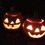 美肌マニア、かぼちゃの種がおすすめ!!