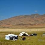 ダイエットに効くチベット体操 第二の儀式
