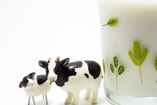 美を生み出す牛乳のスゴイ美容効果
