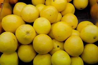 グレープフルーツダイエットの減量効果