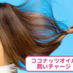 ココナッツオイルの美髪効果とおすすめの使い方