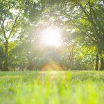 日焼け対策が招く「ビタミンD不足」を解消する日光浴のやり方