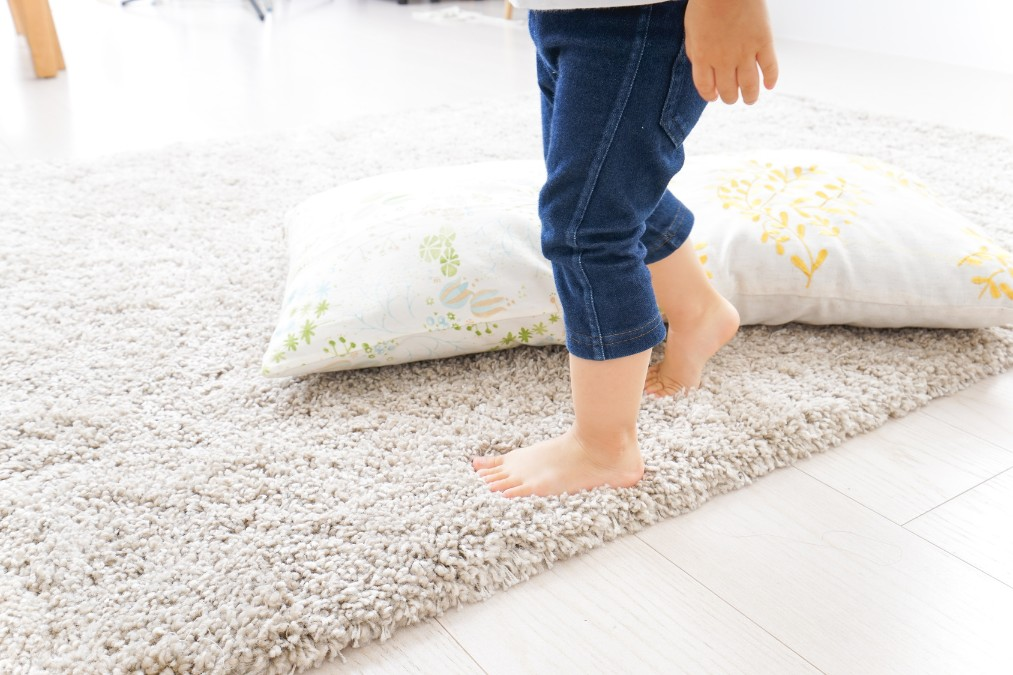 絨毯(カーペット)を見違えるほどキレイにする掃除のやり方