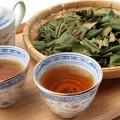夏目前!美肌に近づく びわの葉茶
