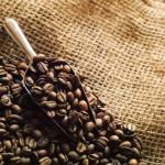 アサイー超えの高い栄養価!「コーヒーベリー」の効果とは?